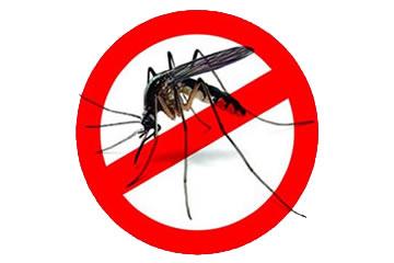 Dedetização de Mosquito da Dengue